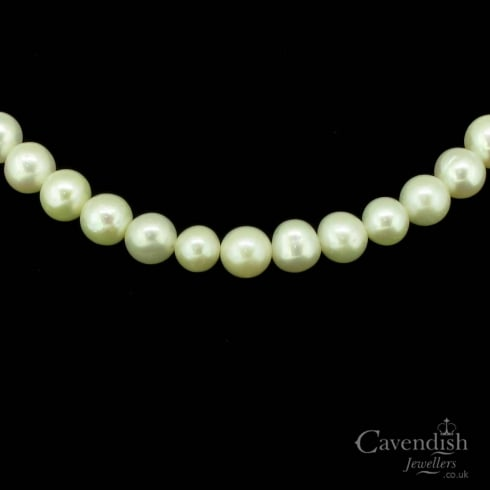 Luxurious Silver & Cultured Pearl Necklace.